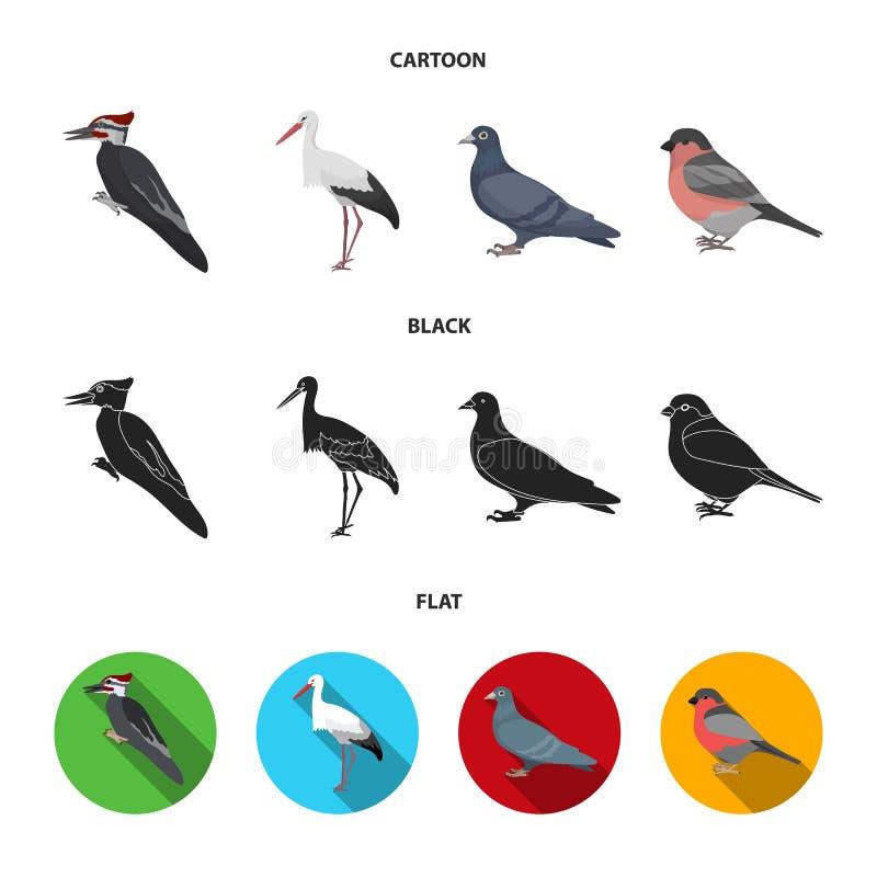 Dzięcioł, bocian i inny, Ptak ustawiać inkasowe ikony w kreskówce, czerń, mieszkanie symbolu zapasu stylowa wektorowa ilustracja ilustracji