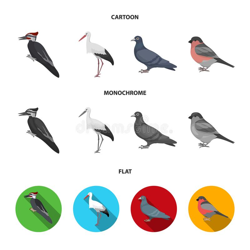 Dzięcioł, bocian i inny, Ptak ustawiać inkasowe ikony w kreskówce, mieszkanie, monochromu symbolu stylowy wektorowy zapas ilustracja wektor