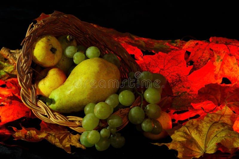 Dziękczynienia lub żniwa cornucopia zdjęcia stock