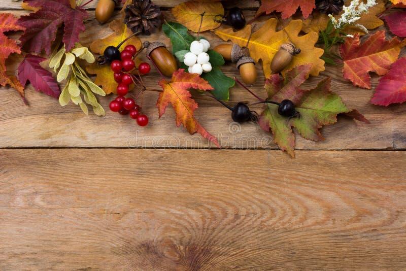 Dziękczynienia tło z spadków liśćmi i jagodą, kopii przestrzeń zdjęcia stock