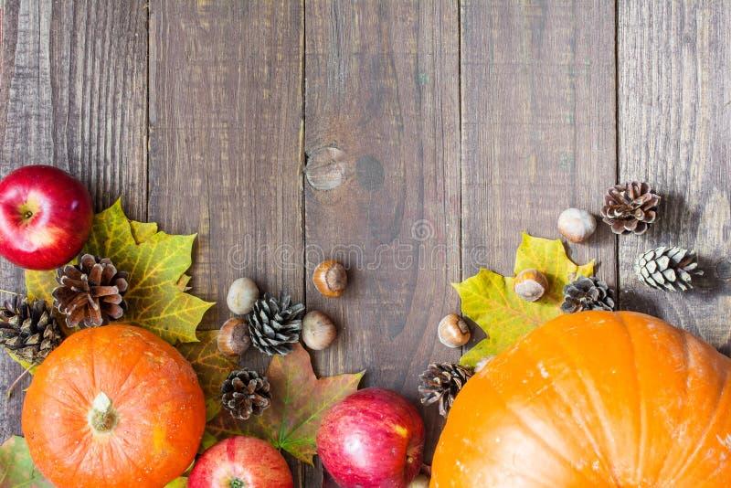 Dziękczynienie jesieni spadku tło z banią, liśćmi, jabłkami, sosna rożkami i dokrętkami, obrazy royalty free