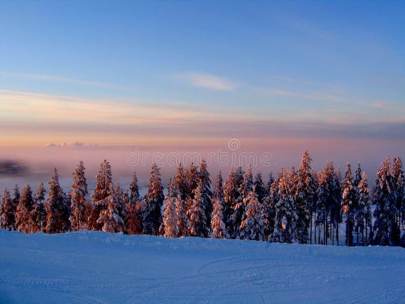 dziś zimy zimna obraz stock