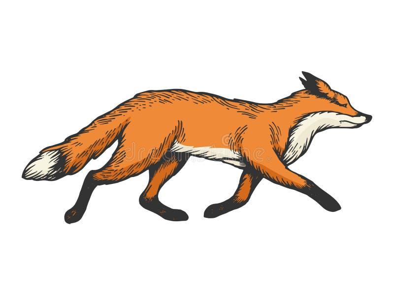 Działającego lisa koloru nakreślenia rytownictwa zwierzęcy wektor royalty ilustracja