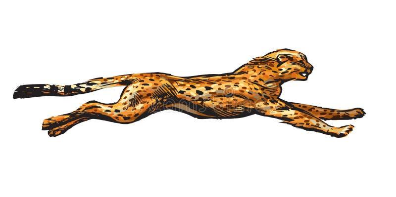 Działający gepard Ręka rysująca wektorowa ilustracja w nakreślenie stylu pojęcia wsi pusta stara perspektywiczna drogowa prędkość ilustracja wektor