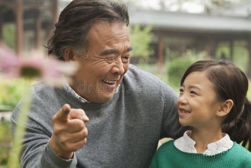 Dziad i wnuczka patrzeje kwiatu w ogródzie zdjęcia royalty free
