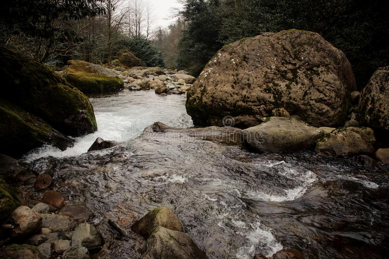 Dzicy halni rzeka przepływy otaczający mech zakrywającymi kamieniami zdjęcia stock
