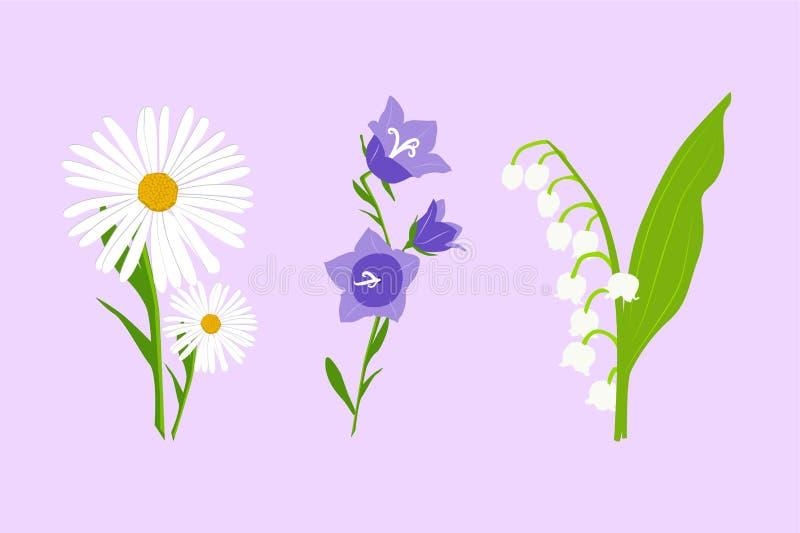 Dzicy kwiaty ustawiający Wektorowa stokrotka, dzwonkowy kwiat i leluja dolina odizolowywająca na świetle, - fiołkowy tło royalty ilustracja
