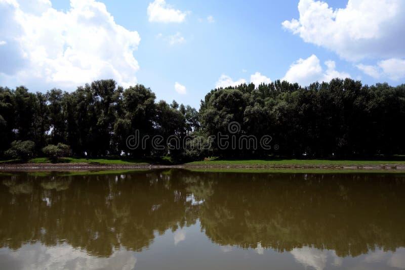 Dzicy miejsca na Danube rękach fotografia stock