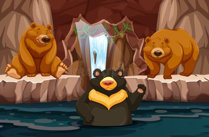 Dzicy niedźwiedzie w podziemnym cavern z wodą ilustracja wektor