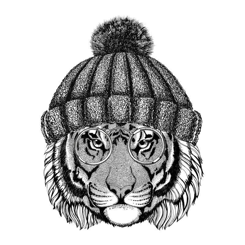 Dzicy tygrysi jest ubranym roczników szkła i trykotowego kapeluszowego modnisia zwierzęcy obrazek dla tatuażu, logo, emblemat, od ilustracja wektor