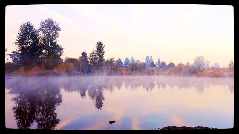 dzień dobry mgła zdjęcia stock