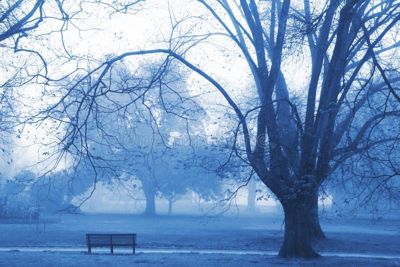 Download Dzień dobry mgła. obraz stock. Obraz złożonej z światło - 145007