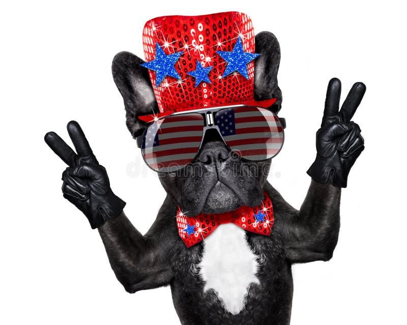 Dzień Niepodległości 4th Lipa pies obrazy stock