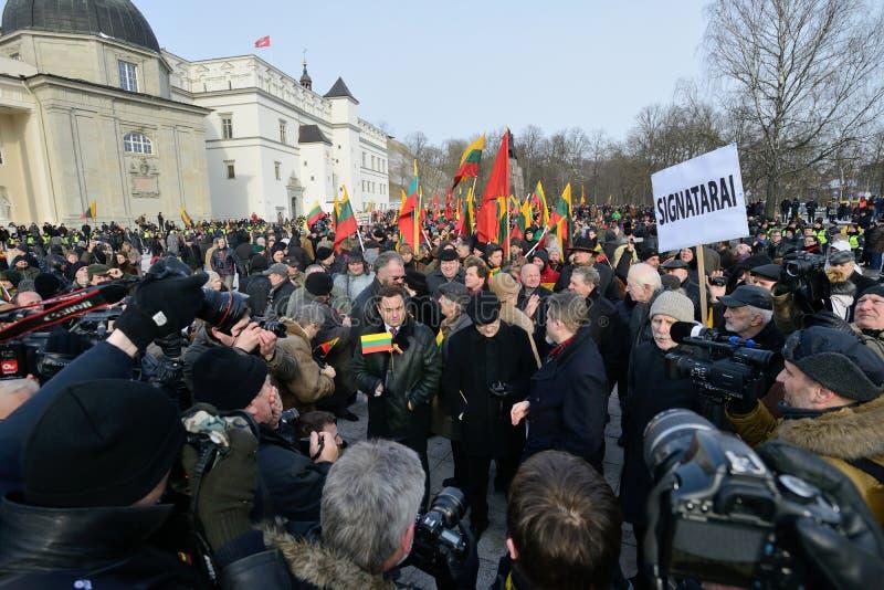 Dzień Niepodległości, Vilnius, Lithuania zdjęcie stock