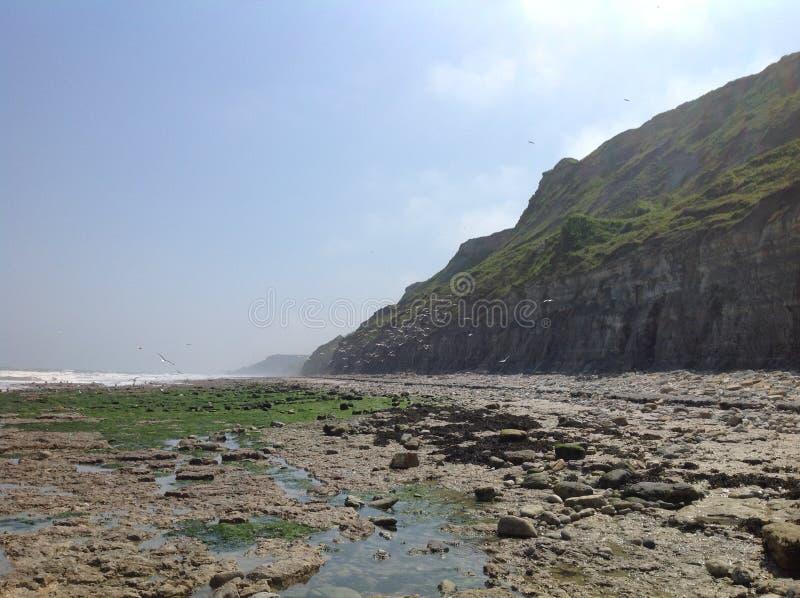 dzień plaża zdjęcie stock