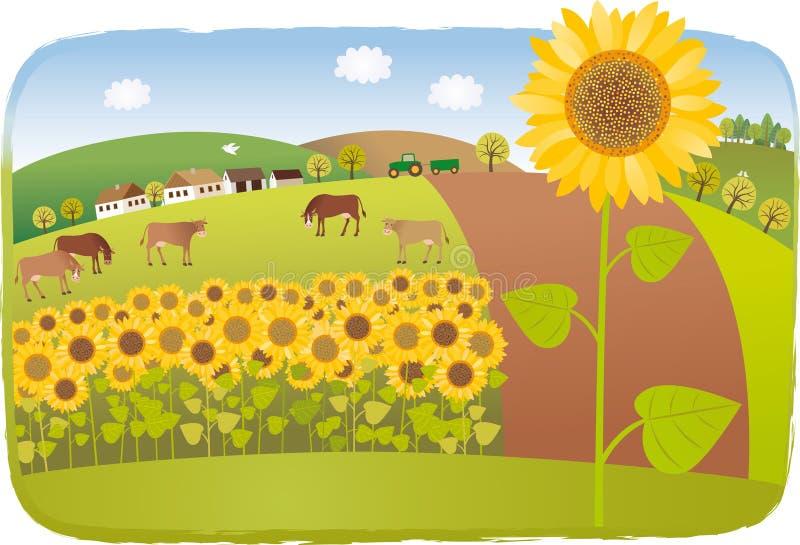 dzień rolnych poly mały słonecznikowy pogodny royalty ilustracja