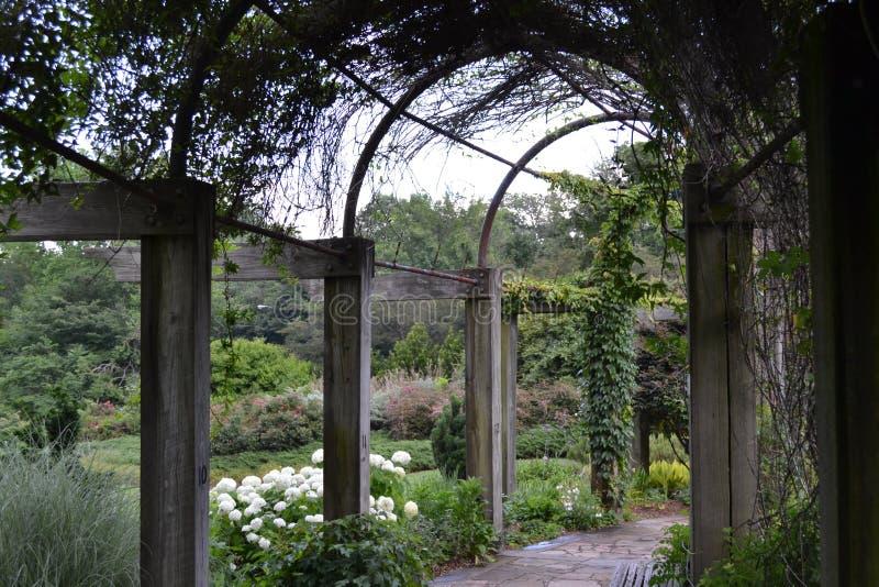 Dzień W ogródzie obrazy royalty free