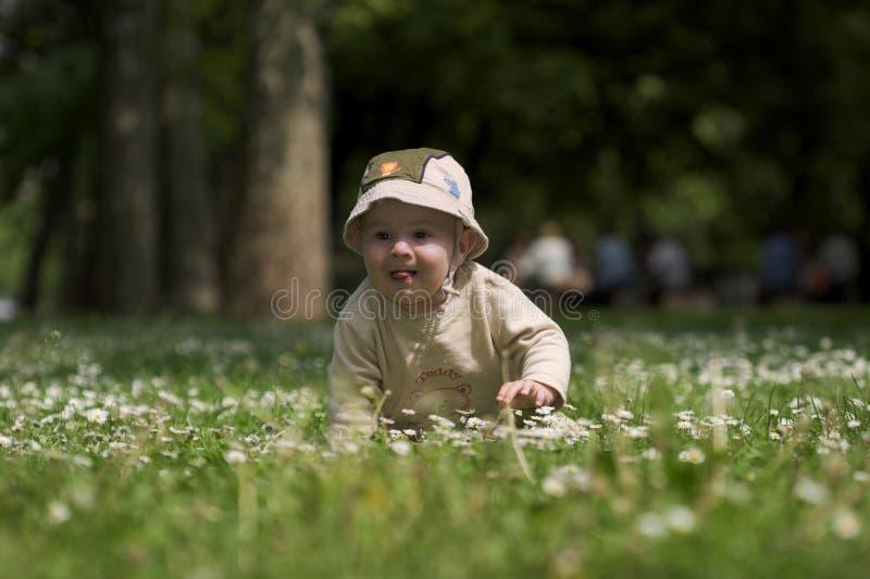 dzieci 3 zielone pola zdjęcie royalty free