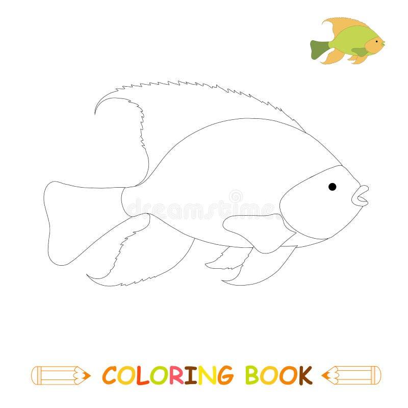 Dzieci barwi strony wektorową ilustrację, śliczną ryby w monochromu i colour wersji, ilustracja wektor