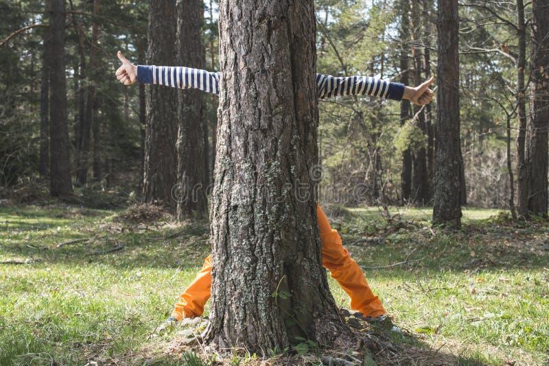 Download Dzieci bawią się w lesie obraz stock. Obraz złożonej z greenbacks - 53777201