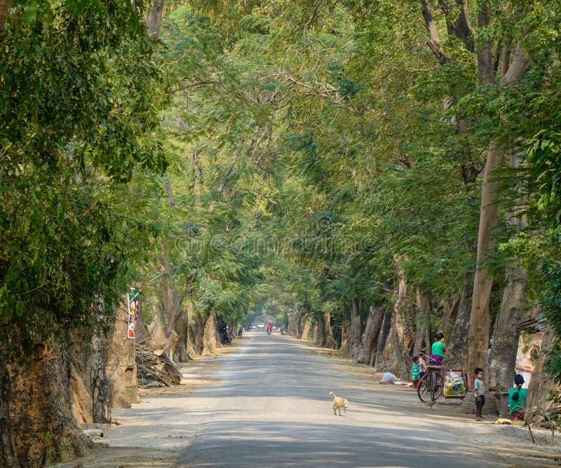 Dzieci bawić się na wiejskiej drodze w Bagan, Myanmar obrazy stock