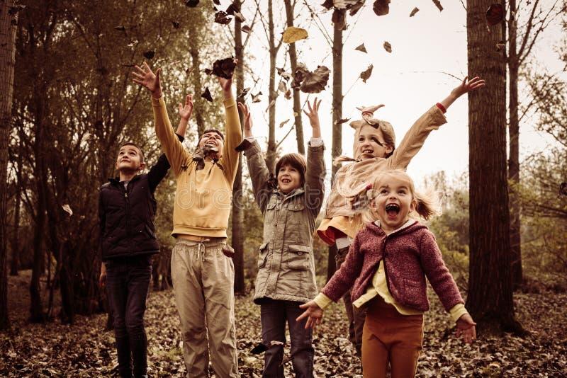 Dzieci bawić się w spadków liściach obraz stock
