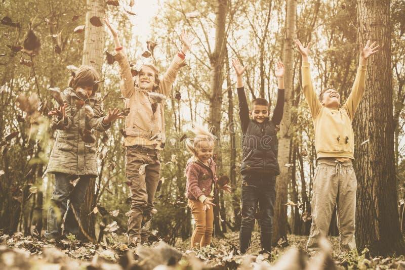 Dzieci bawić się w spadków liściach Szczęśliwi dzieci rzut spadać l zdjęcie stock