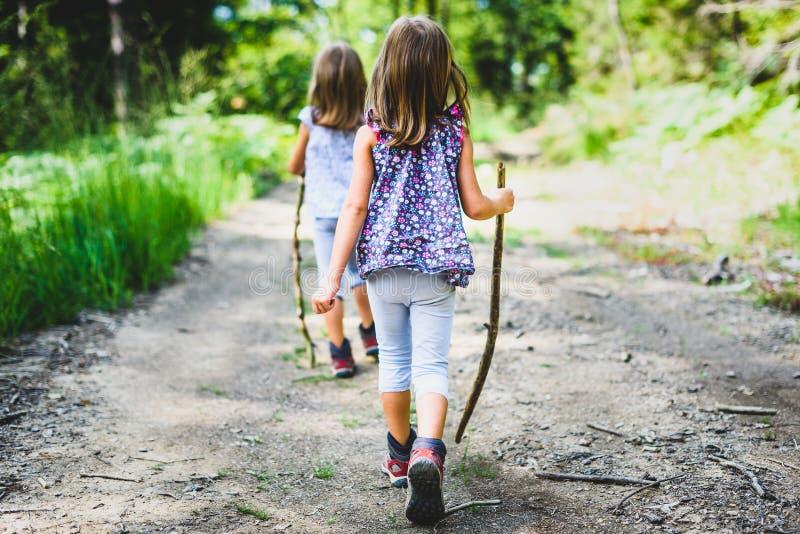 Dzieci - bliźniacze dziewczyny wycieczkują w górach zdjęcia stock