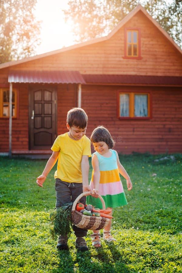 Dzieci brat i siostra w tle drewniany dom z wielki koszykowy pełnym warzywa r w swój fotografia royalty free
