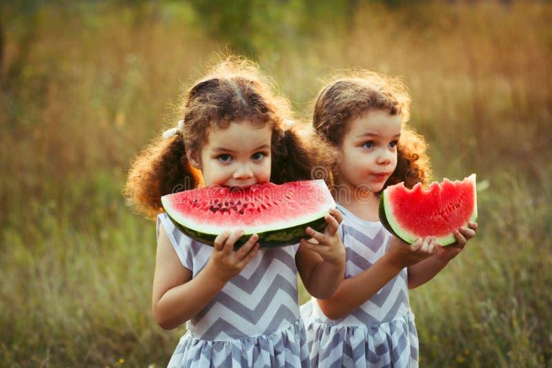 Dzieci je arbuza w parku Dzieciaki jedzą owoc outdoors Zdrowa przekąska dla dzieci Mali bliźniacy bawić się na pyknicznym bi obraz royalty free