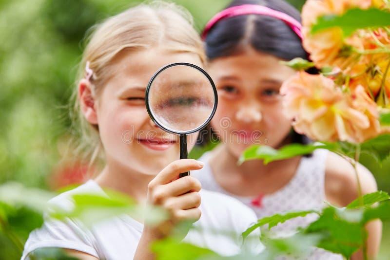 Dzieci patrzeje kwiaty z powiększać - szkło obraz stock