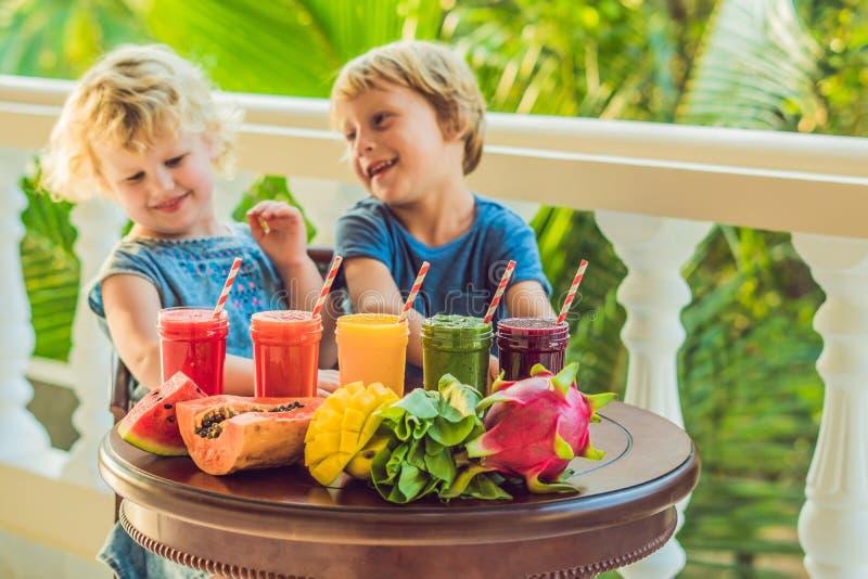 Dzieci piją kolorowych zdrowych smoothies Arbuz, melonowiec, mango, szpinak i smok owoc, Smoothies, soki, napoje, dri fotografia stock