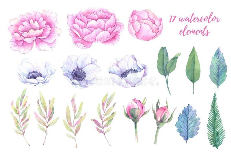 dzieci target35_1_ ilustracjom parka stawu łabędź chodzą akwarelę Wiosna liście, peonie i anemony, fl royalty ilustracja