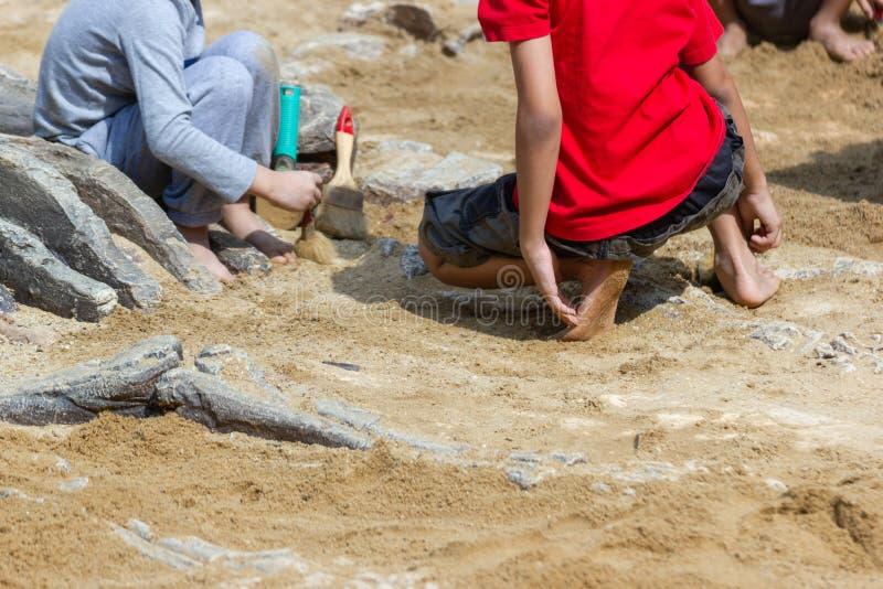 Dzieci uczy się wokoło, Wykopujący dinosaur skamielin symulację obraz stock