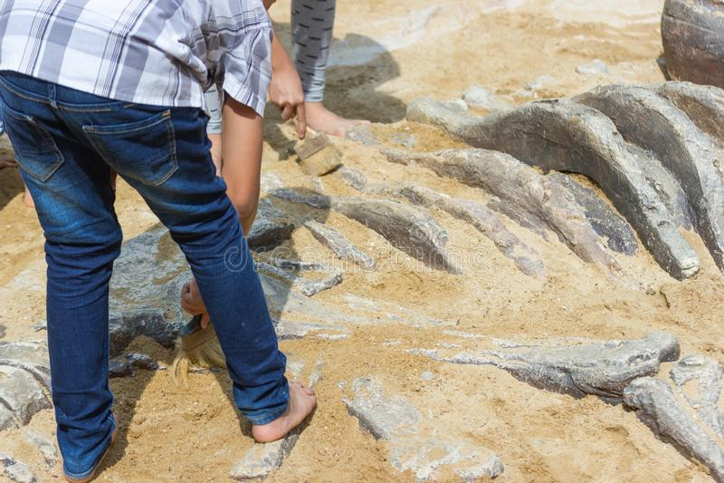 Dzieci uczy się wokoło, Wykopujący dinosaur skamielin symulację zdjęcie stock