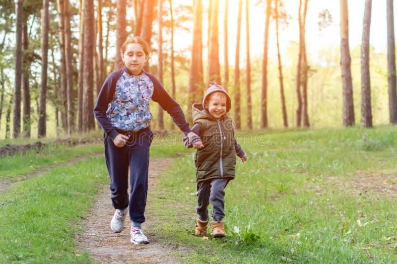 Dzieci w lesie fotografia royalty free