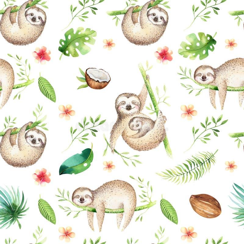 Dzieci zwierząt opieszałości pepiniery bezszwowy deseniowy obraz Akwareli boho tropikalny rysunek, dziecko tropikalny rysunek ilustracji