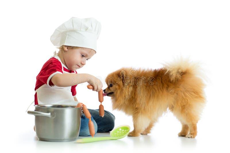 Dzieciak chłopiec bawić się szefa kuchni z psem Dziecko weared kucharz karmi Spitz szczeniaka zdjęcia stock