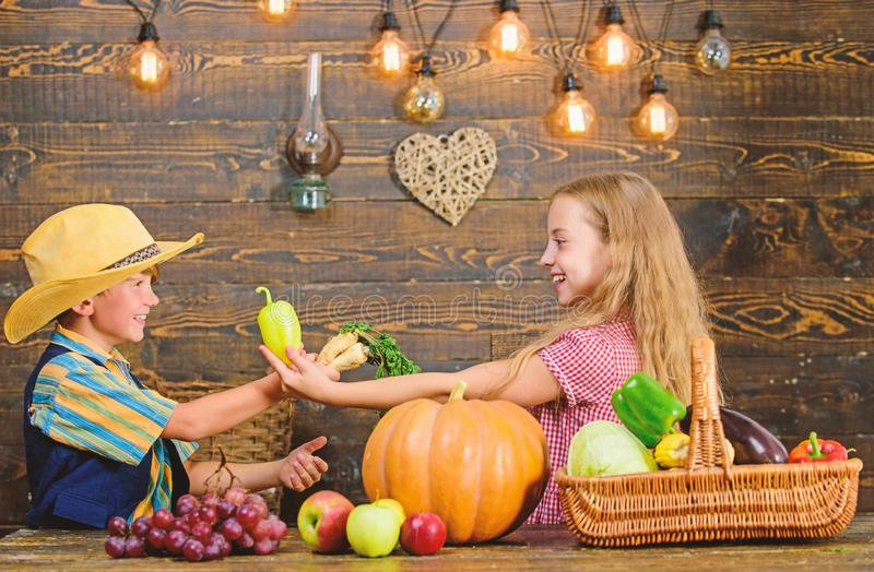 Dzieciak?w rolnik?w dziewczyny ch?opiec warzyw ?niwa Uprawia? ziemi? uczy dzieciak?w ich jedzenie komesi dok?d od Rodze?stwa ma z zdjęcia royalty free