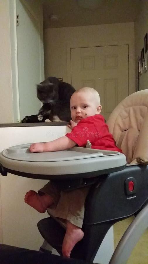 dzieciak z kotem zdjęcia royalty free