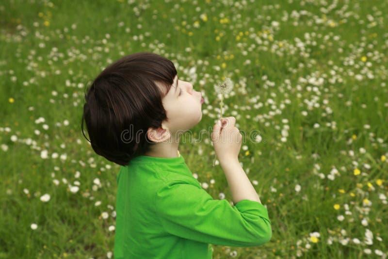 Dzieciaka podmuchowy dandelion outdoors obrazy stock