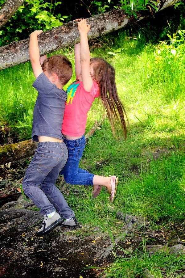 Dzieciaki bawić się w drewnach obrazy stock