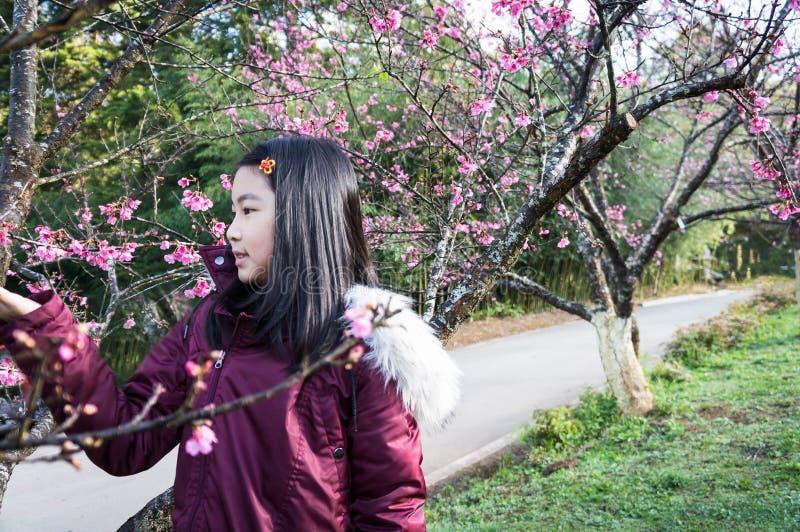dzieciaki biorą Plenerowego portret pod Sakura drzewem zdjęcia royalty free
