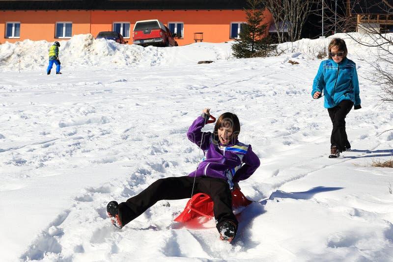 Dzieciaki jedzie w saniu, zima krajobraz, Spicak, Artystyczny las, republika czech fotografia royalty free