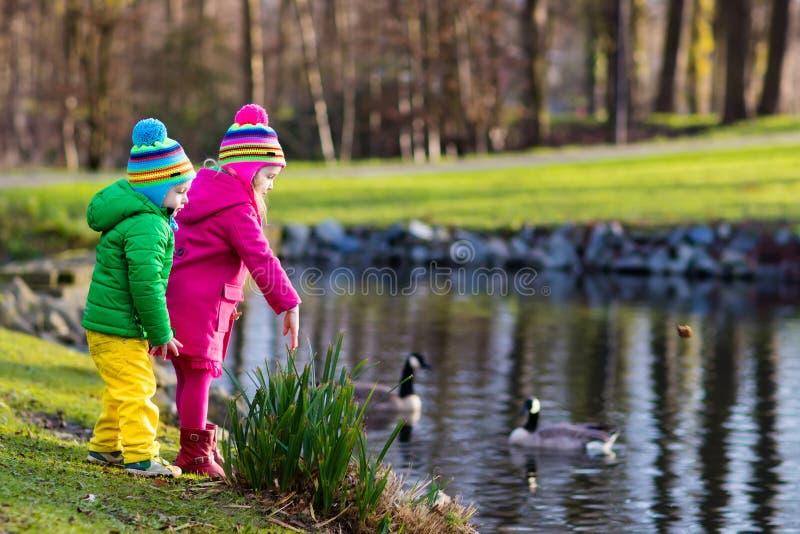 Dzieciaki karmi kaczki w jesień parku fotografia stock