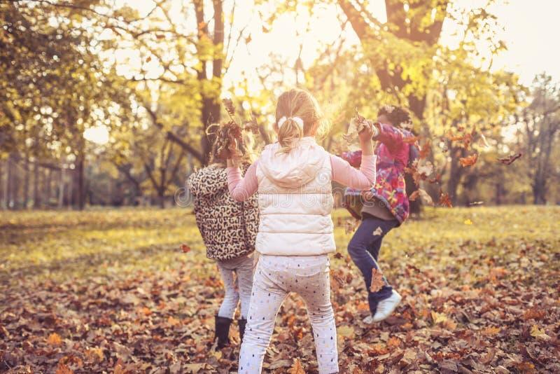 Dzieciaki ma wpólnie i bawić się w parku fotografia stock
