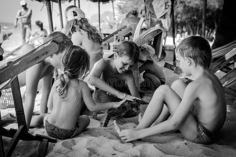Dzieciaki plaing z kotem zdjęcie royalty free