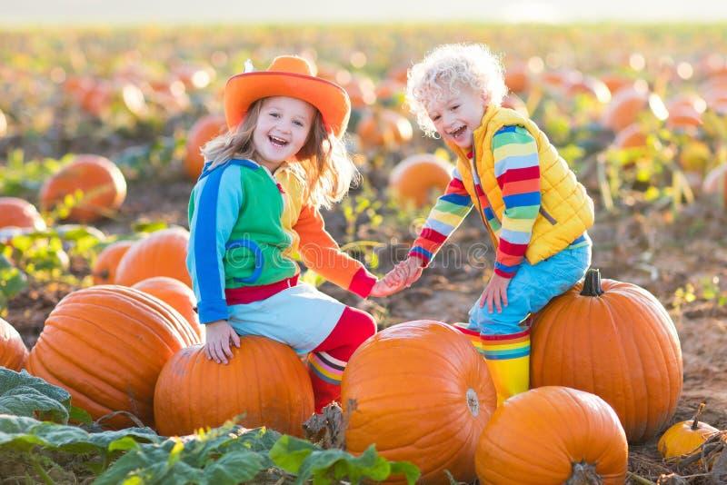Dzieciaki podnosi banie na Halloweenowej dyniowej łacie zdjęcie stock