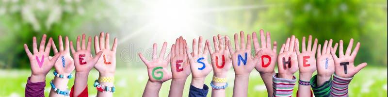 Dzieciaki trzymające słowo Viel Gesundheit Oznacza Utrzymanie Zdrowego, Trawego Łąka fotografia royalty free