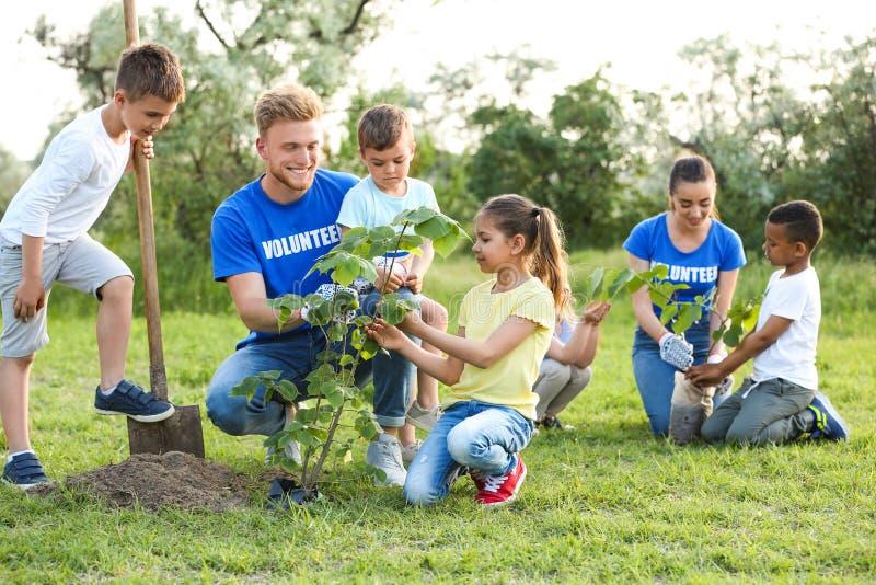 Dzieciaki zasadza drzewa z wolontariuszami zdjęcie royalty free